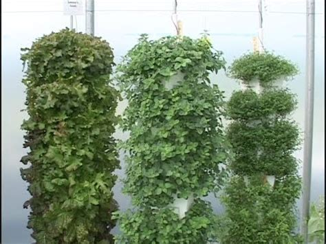 hydroponics vertical towers youtube