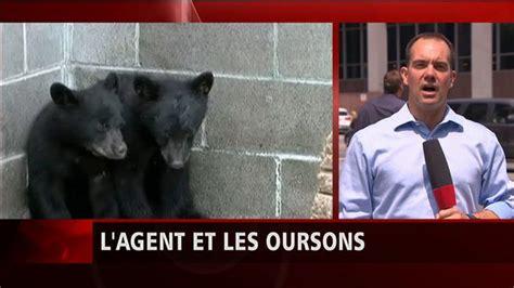 suspendu pour ne pas avoir tu 233 deux oursons la suite de l histoire ici radio canada ca
