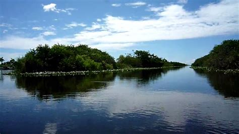 Youtube Airboat Rides Everglades by Everglades Holiday Park Airboat Ride Youtube