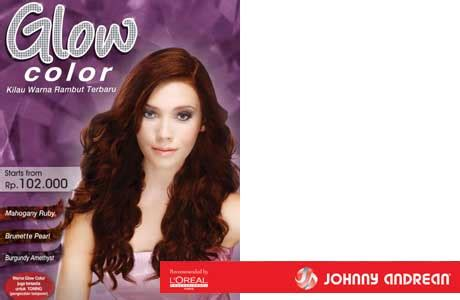 great concept  hair color johnny andrean