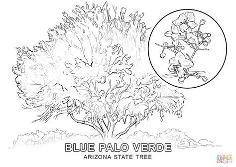 Arizona State Tree Coloring Page Free Printable Coloring
