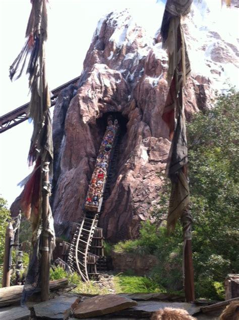 attractions  adults  disney worlds animal kingdom