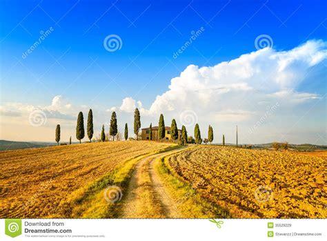Tuscany Farmland Cypress Trees And White Road Siena