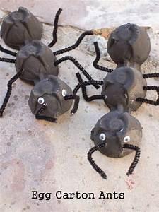Hausmittel Gegen Spinnen : die besten 20 ameisen ideen auf pinterest ameise handwerk hausmittel gegen ameisen und ~ Whattoseeinmadrid.com Haus und Dekorationen