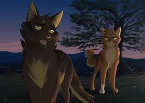 A lovely night [Warrior Cats] by OwlCoat on DeviantArt