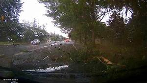 lighting strikes tree causing crash, (For licensing and ...