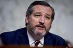Ted Cruz questions conservative credentials of Trump ...