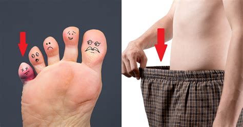 10 Human Body Parts That Have Absolutely No Use | TheRichest