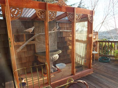 how to create an aviary for rescued pigeons or doves