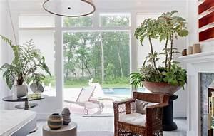 Zimmerpflanzen Für Schatten : sch ne zimmerpflanzen moderne pflegeleichte topfpflanzen ~ Michelbontemps.com Haus und Dekorationen
