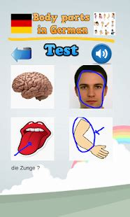 learn body parts  german android apps  google play