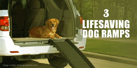 dog ramps folding telescoping steps stairs