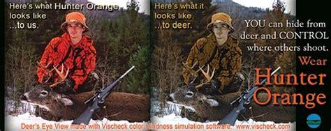 can deer see blaze orange safety basics nys dept of environmental conservation