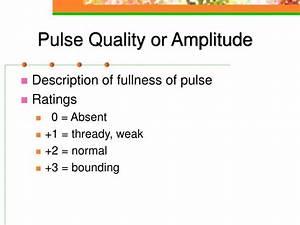 Diagram Pulse Quality