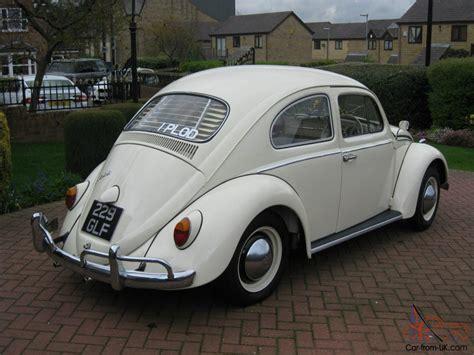 volkswagen car white 1963 white vw beetle fully restored