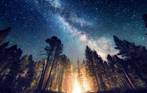 Long Exposure Starry Night Milky Way Galaxy Nature