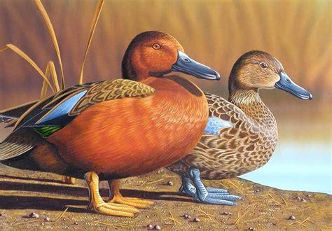 Cinnamon Teal 2002 Nevada Duck Stamporiginal Acrylic