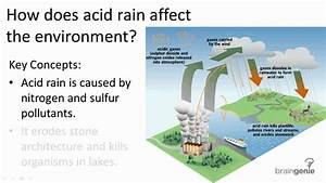 18 2 6 How Does Acid Rain Affect The Environment