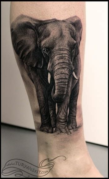 wild tattoos elephant tattoos  women