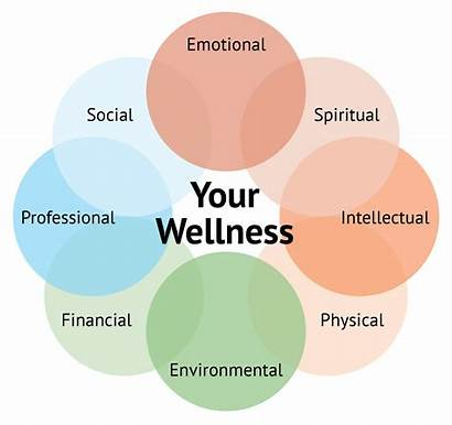 Wellness Balance Healthy Wheel Lifestyle Well Being
