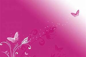 Pink Butterfly Vector Background HD Wallpaper