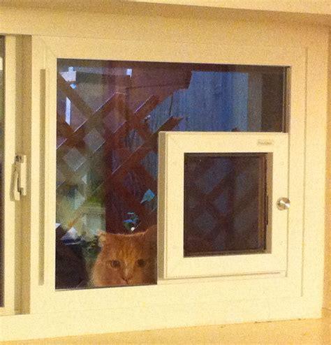 window cat door electronic pet doors doors cat doors pet doors for