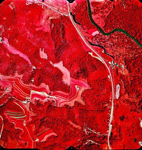 Hair Implants La Crescent Mn 55947 1994 Color Infrared Photos La Crescent Mn Wi
