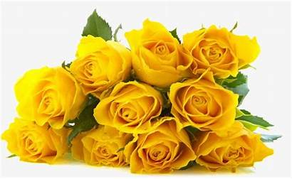Roses Yellow Rose Bouquet Clipart Flowers Flower