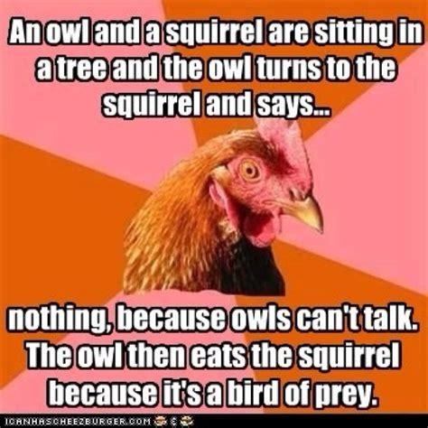 Anti Joke Chicken Meme - anti joke