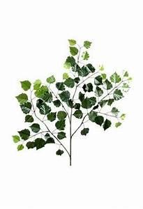 Branche De Bouleau : feuillage artificiel branche de bouleau new composition ~ Melissatoandfro.com Idées de Décoration