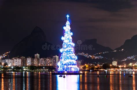xmas tree structure tree structure in de janeiro stock image image of park evening 48999767