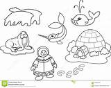 Eskimo Coloring Igloo Animals Clothes Cartoon Pages Drawing Fauna Polar National Narwhal Vector Clip Illustrations Clipart Vectors Dreamstime sketch template