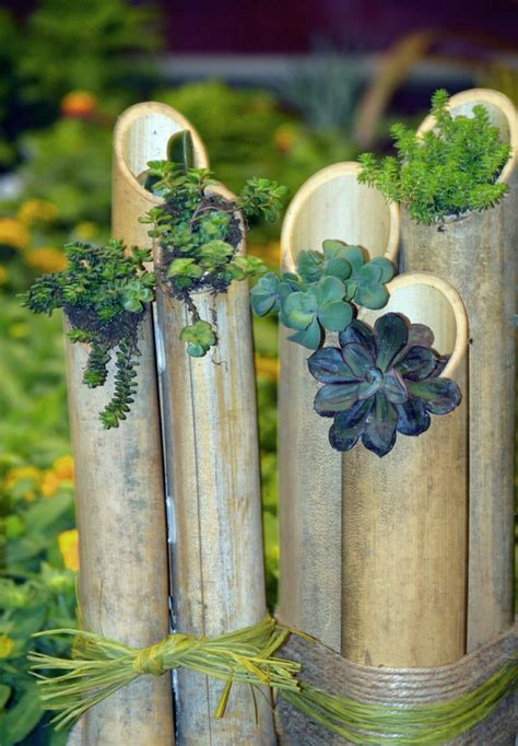 bamboo decoration  exotic flair   garden hum