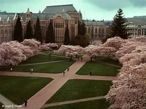 CM's Guide to University of Washington - College Magazine