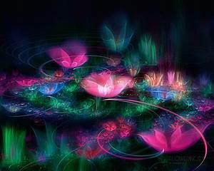 Fleurs : wallpaper, fond d'écran, image, photo, fond