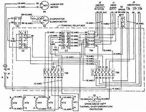 Wiring Diagram Goodman Air Conditioners