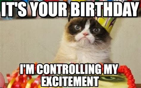 Birthday Grumpy Cat Meme - best happy birthday cat meme