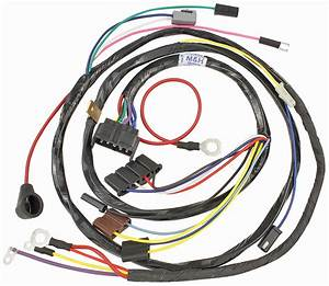 1954 Buick Special Wiring Harness