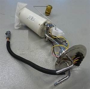 Motorhome 454 Fuel Pump Relay Location  Motorhome  Free