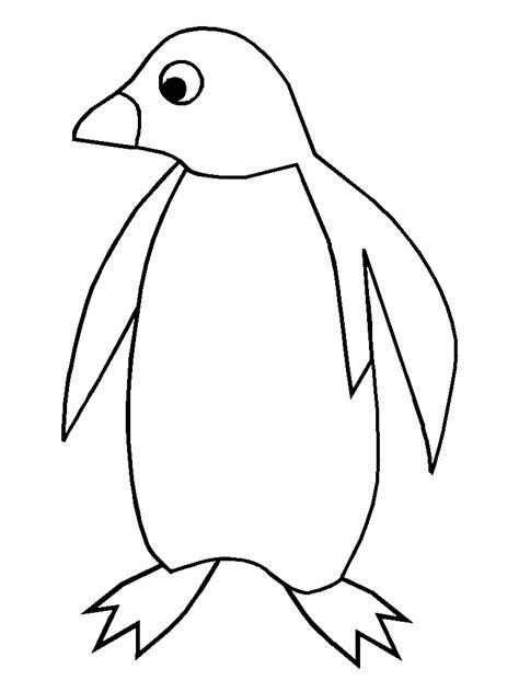 animal drawings baby penguin drawing  black  white