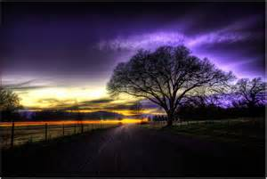 Serene Night Photography