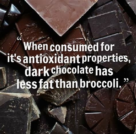 chocolate funny quotes  sayings quotesgram
