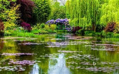 Bing Wallpapers Garden Water Trees Bridge Plants