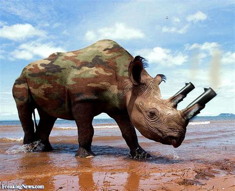 animal weapons pictures freaking news