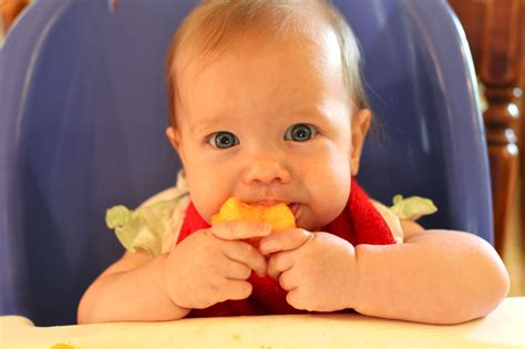 Healthy Benefits Of Mangoes To Your Baby Baby Digezt