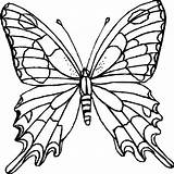 Coloring Butterfly Printables Printable Butterflies Pages Colouring Colour Central sketch template