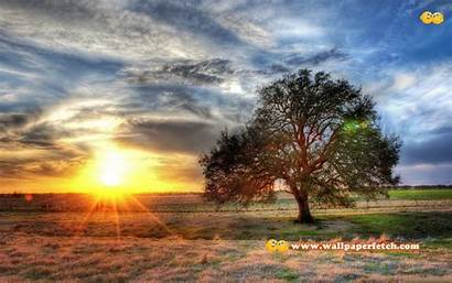 Nature Cool Backgrounds Wallpapers Background