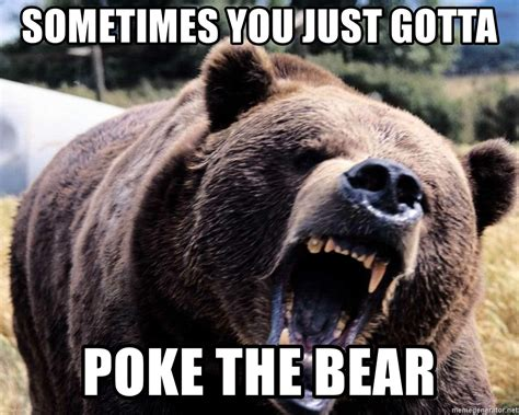 Gay Bear Meme - sometimes you just gotta poke the bear bear week meme generator