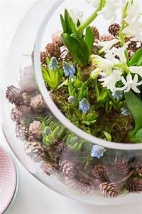 Blumenzwiebeln Im Glas : die besten 25 gl ser dekorieren ideen auf pinterest einmachgl ser basteleien wie man ~ Markanthonyermac.com Haus und Dekorationen