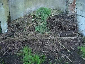 Asseln Im Garten : aha garten kompostieren 4 800 ~ Lizthompson.info Haus und Dekorationen